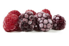 Macro shot of some frozen berries Stock Images
