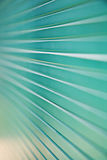 Close-up of patterned Glass Royalty Free Stock Photos