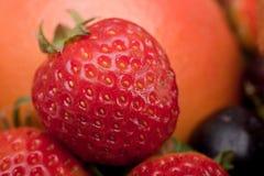 Macro shot of a strawberry Stock Photos