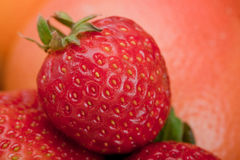 Macro shot of a strawberry Royalty Free Stock Photos