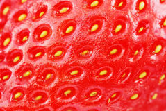 Macro shot strawberry Royalty Free Stock Images