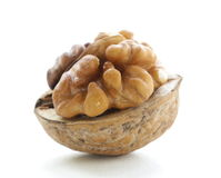 Macro shot walnuts Stock Photography