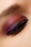 Macro shot of woman's beautiful eye, bright and deep colors make Stock Image
