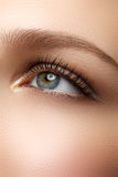 Macro shot of woman's beautiful eye with extremely long eyelashe stock photo
