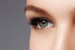 Macro shot of woman's beautiful eye with extremely long eyelashe royalty free stock photo