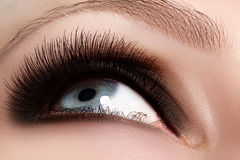 Macro shot of woman's beautiful eye with extremely long eyelashes. Sexy view, sensual look. Female eye with long eyelashes Royalty Free Stock Photos