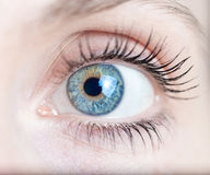 Macro shot of a woman's eye Royalty Free Stock Photo