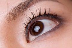 Macro shot of a woman's eye Stock Images
