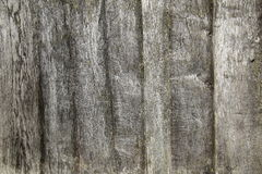 Macro shot of wooden planks usable as texture Stock Photography