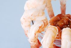 Free Macro Shrimp Cocktail Shallow DOF Stock Photos - 12612043