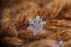 Macro simple de flocon de neige sur le fond brun Photographie stock libre de droits