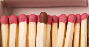 Macro. Single brown matchstick among red, concept crowd Stock Photos