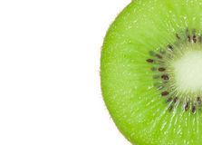 Macro Slice of fresh kiwi fruit isolated Stock Image