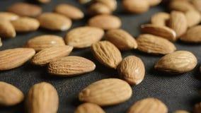 Macro slide shot of almonds. 4K stock footage