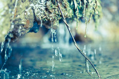 Macro of a small waterfall with branch. Inside water Royalty Free Stock Images