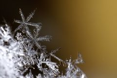 Macro snowflake. With dark background stock photos