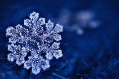 Macro snowflake crystal Stock Photos
