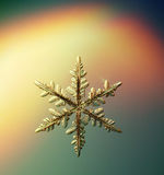 Macro snowflake ice crystals present Stock Image