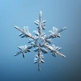 Macro snowflake ice crystals Stock Image