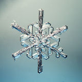 Macro snowflake ice crystals present natural Royalty Free Stock Images