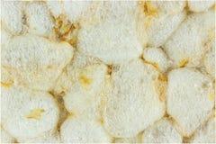 Macro soplada del pan del arroz Imagen de archivo