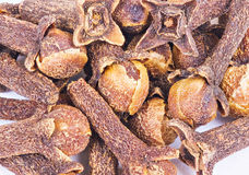 Macro spice cloves buds Royalty Free Stock Photos