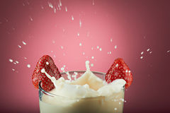 Macro of splashes of milk Stock Photos