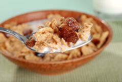 Macro spoonful of bran and raisin cereal Stock Photography