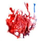 Macro spot blotch burgundy, blue texture isolated Stock Image