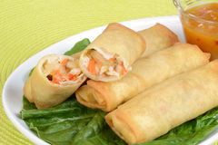 Macro spring rolls Royalty Free Stock Photography