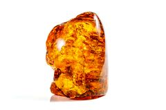 Macro stone mineral amber with insects, flies and beetles on a white background close up. Macro stone mineral amber with insects, flies and beetles on a white royalty free stock photos