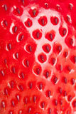 Macro strawberry Royalty Free Stock Photography