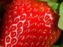 Macro of strawberry Royalty Free Stock Photo