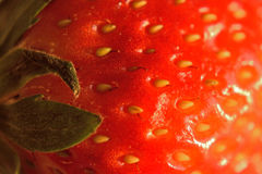 Macro Strawberry surface details Stock Photos
