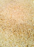 Macro struttura della sabbia Immagini Stock