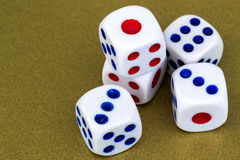 Macro Studio Shot of Five White Plastic Dice Stock Images
