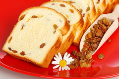 Macro of sweet loaf slices with raisins Stock Image