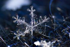 Macro symétrie de plan rapproché de flocon de neige congelée Images libres de droits