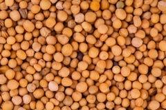 Macro Texture of Beige Peas Stock Photo