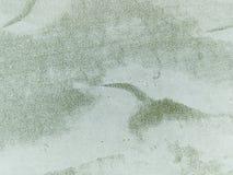 Macro texture - centrales - cactus Photo libre de droits