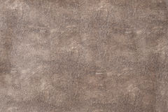 Macro texture of genuine leather Stock Photography