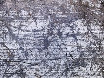 Macro texture - metal - scratched Stock Photography