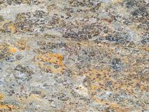 Macro texture - stone - discolored Stock Images