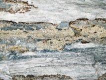 Macro texture - stone - discolored Stock Photos