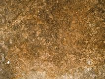 Macro texture - stone - mottled Stock Images