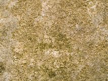 Macro texture - stone - mottled. Stock macro photo of the texture of mottled rock.  Useful for abstract backgrounds or layer masks Stock Photo
