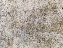 Macro texture - stone - mottled rock Royalty Free Stock Image