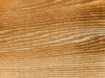 Macro texture - wood - grain Royalty Free Stock Photos