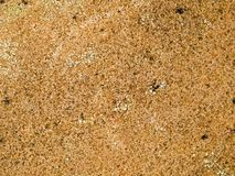 Macro textuur - gevlekte steen - stock foto