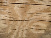 Macro textuur - hout - dat met patroon is gebarsten Stock Foto
